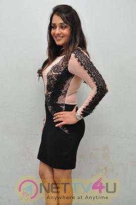 latest stills of actress nikita at terror movie logo launch
