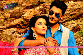 latest stills of where is vidyabalan telugu movie