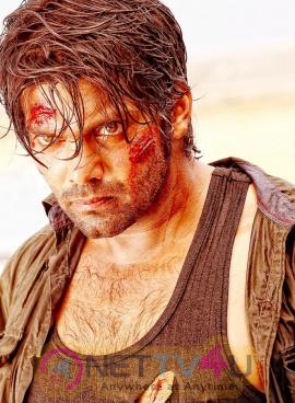 Mande Suryudu Movie Attractive Stills Telugu Gallery
