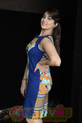 Manjusha Luminous Images At Jaguar Movie Sucess Meet Telugu Gallery