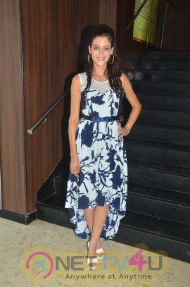 Melnattu Marumagan Movie Audio Launch Stills