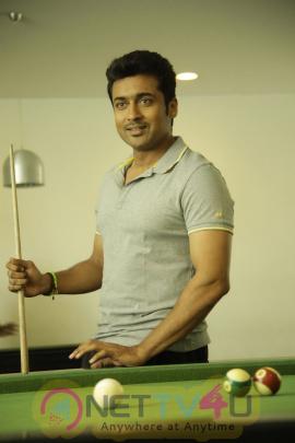 Memu Telugu Movie Attractive High Quality Photos Telugu Gallery