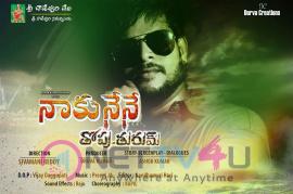 Naku Nene Thopu Turum Movie Posters Telugu Gallery