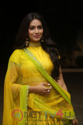 Pallavi Subhash Lovely Stills At Naruda Donaruda Movie Audio Launch Telugu Gallery
