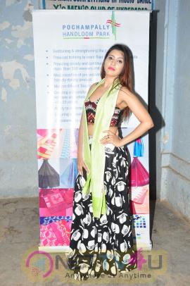 Pochampally Ikat Art Mela Launch At YMCA Hall Photos Telugu Gallery