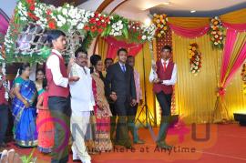 Producer TR Selvam Daughter Kiruthika Wedding Reception Stills Tamil Gallery