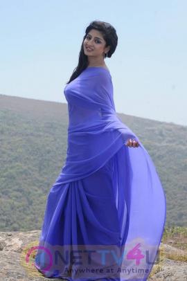 photos of actress poonam kaur from acharam tamil movie