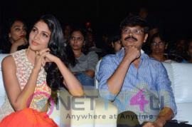 photos of bhale bhale magadivoy movie audio launch  256