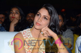 photos of bhale bhale magadivoy movie audio launch  258