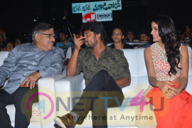 photos of bhale bhale magadivoy movie audio launch  260