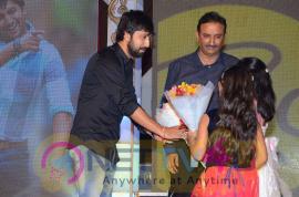 photos of bhale bhale magadivoy movie audio launch  265