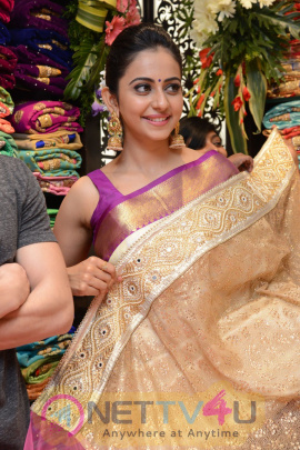 rakul preet singh high quality photos
