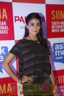 recent photos of actress pooja hegde at south indian international movie awards press meet 12