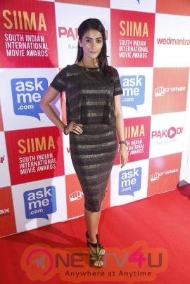 recent photos of actress pooja hegde at south indian international movie awards press meet 22
