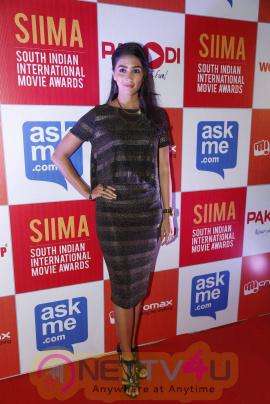 recent photos of actress pooja hegde at south indian international movie awards press meet 9