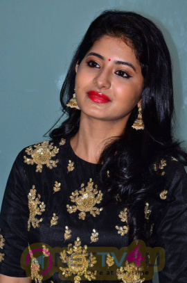 recent photos of actress reshmi menon at urumeen movie audio launch 10