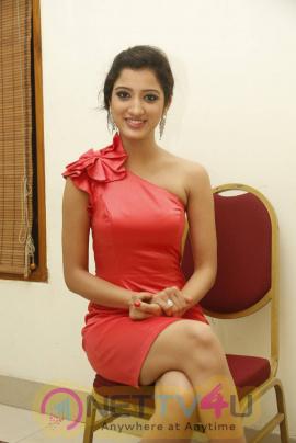 recent photos of actress richa panai at basthi movie audio launch