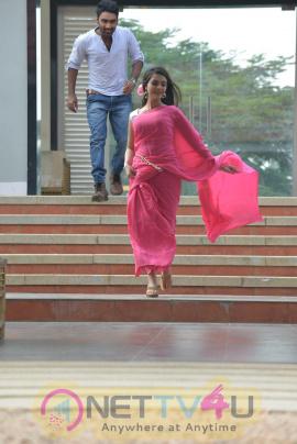 Romance With Finance Movie Latest  New Stills Telugu Gallery