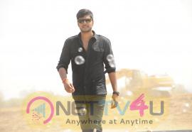 RUN  Telugu Movie Latest Stills Telugu Gallery