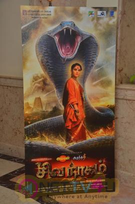 Shiva Nagam Tamil Movie Teaser Launch Beauteous Photos