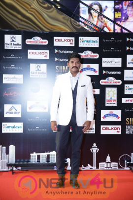 SIIMA Day 2 Good Looking Photos
