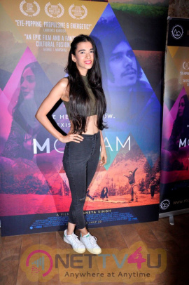 Special Screening Of Film M Cream Attractive Photos Hindi Gallery