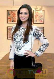 Sana Khan Hot And Attractive Images Hindi Gallery