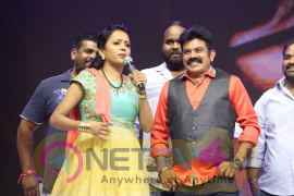 Sardaar Gabbar Singh Audio Launch Stills Telugu Gallery