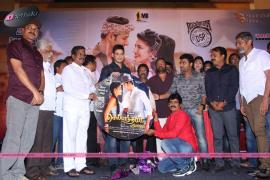 selvandhan movie audio launch29