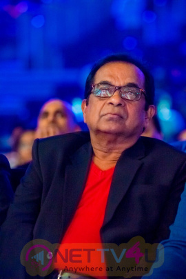 south indian international movie awards 2015   photos of day 02 257