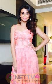 Surveen Chawla Sexy And Hot Images Hindi Gallery