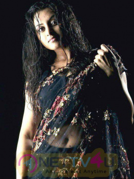 Tamil Actress Sunita Verma Hot Photoshoot Images Tamil Gallery
