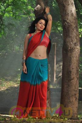 Telugu Actress Asha Saini Latest Hot Photoshoot Stills Telugu Gallery