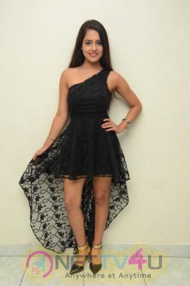 Telugu Actress Malvi Malhotra Beautiful Images Telugu Gallery