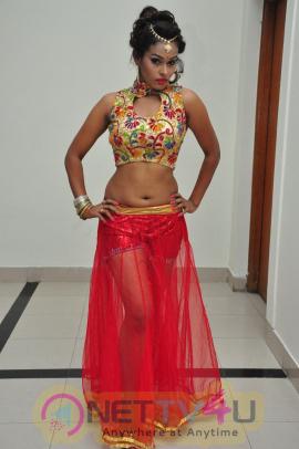 Telugu item dancer nisha hot stills nettv4u telugu item dancer nisha hot stills telugu gallery thecheapjerseys Image collections