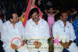 Telugu Movie Vetade Puli Audio Function Photos Telugu Gallery
