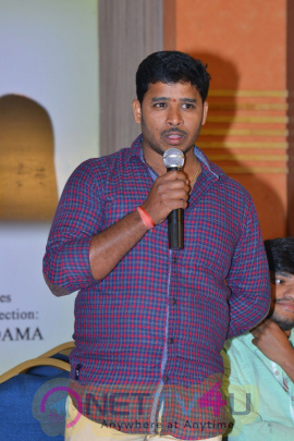 Trivirikram Production No1 Movie Opening Gorgeous Photos Telugu Gallery