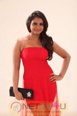 Tamil Actress Charvi Glamour Photos Tamil Gallery