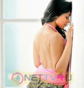 Tamil Actress Shriya Saran Hot Photo Shoot Stills Tamil Gallery