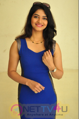 Telugu Actress kashmira kulkarni Hotshoot Images Telugu Gallery