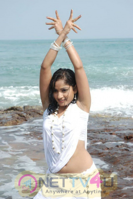 Telugu Actress Madhavi Latha Hot Latest Stills Telugu Gallery
