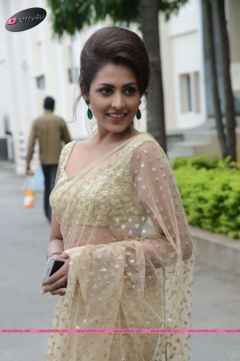 Telugu Actress Madhu Shalini Charming Photo Gallery