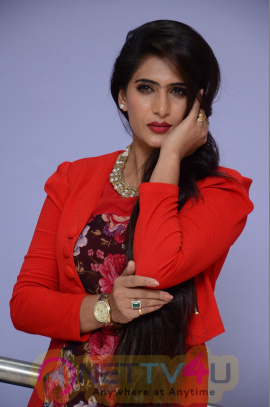 Telugu Actress Neha Saxena Latest PhotoShoot Images Telugu Gallery