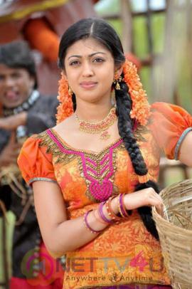 Telugu Actress Pranitha Subhash  Beautiful Photos