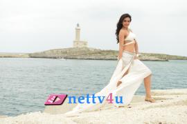 telugu actress rakul preet singh glamorous photo gallery