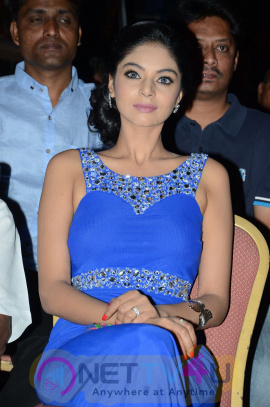 Telugu Actress Sanam Shetty Hot Images & Latest Stills
