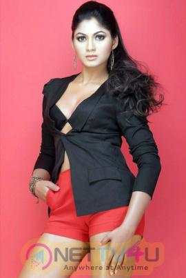 Actress Shruthi Reddy Beauteous Photos