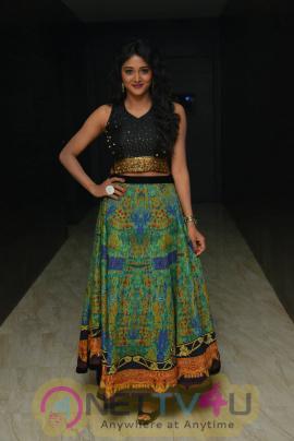 Telugu Actress Sushma Raj Latest Photo Shoot Stills Telugu Gallery