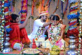 telugu movie sahasam cheyara dimbaka images 33