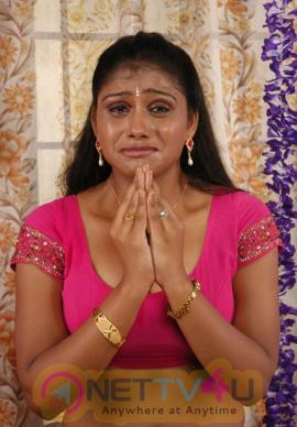 Thalapulla Tamil Movie Hot Photo Shoot Images Tamil Gallery